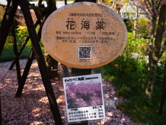 光則寺(鎌倉)