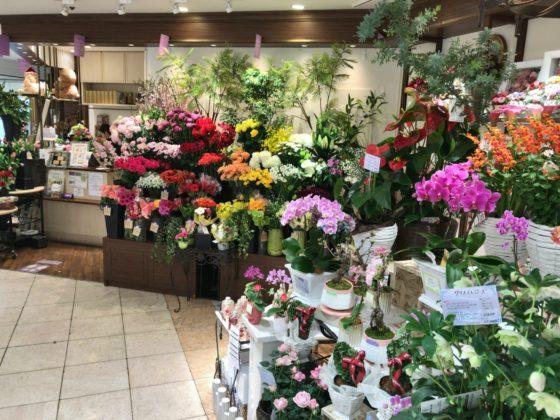 横浜駅近くの花屋 ヒビヤカダンスタイル