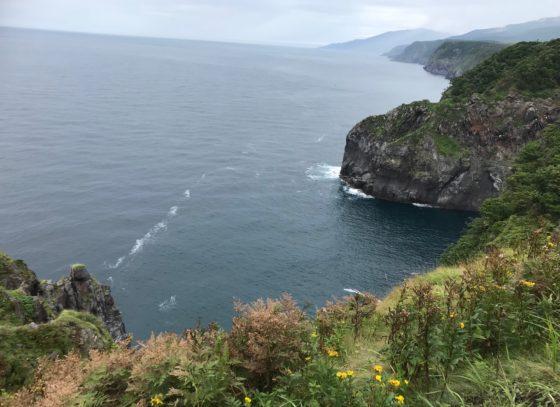 知床の象岩
